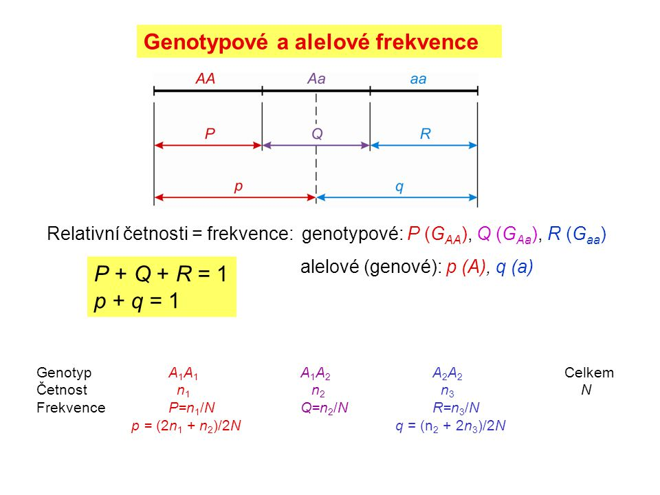 """Příčiny neplatnosti H-W rovnováhy: Metodické příčiny: Neplatnost některého z předpokladů H-W modelu: nulové alely """"allelic dropout Snížení heterozygotnosti: selekce proti heterozygotům nenáhodné páření (inbreeding, asortativní páření) strukturovanost populace (rozdílné frekvence alel, Wahlundův efekt) Zvýšení heterozygotnosti: selekce podporující heterozygoty nenáhodné páření (outbreeding, negativní asortativní páření) migrace mutace"""