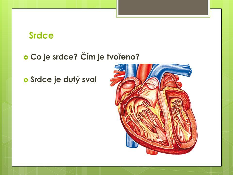 Srdce  Co je srdce? Čím je tvořeno?  Srdce je dutý sval