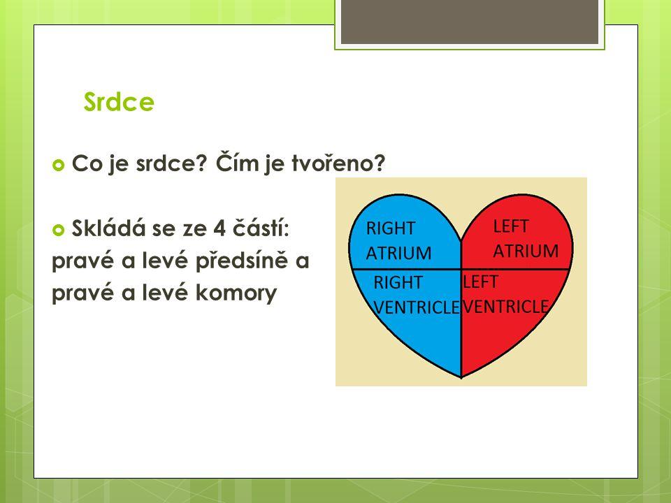 Srdce  Co je srdce? Čím je tvořeno?  Skládá se ze 4 částí: pravé a levé předsíně a pravé a levé komory