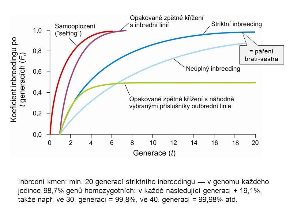 = páření bratr-sestra Inbrední kmen: min. 20 generací striktního inbreedingu  v genomu každého jedince 98,7% genů homozygotních; v každé následující