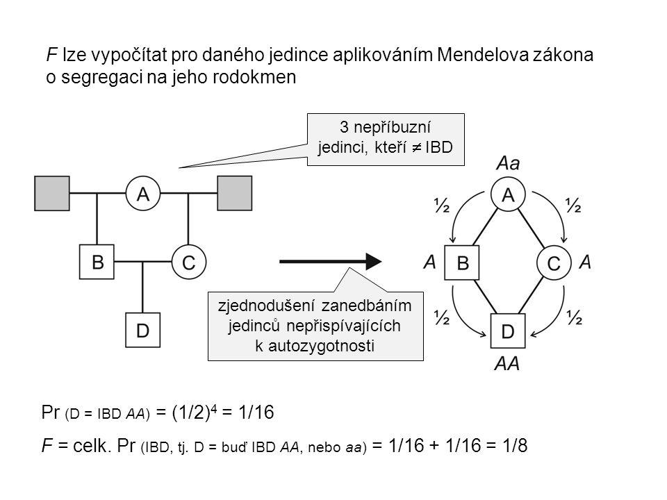 F lze vypočítat pro daného jedince aplikováním Mendelova zákona o segregaci na jeho rodokmen zjednodušení zanedbáním jedinců nepřispívajících k autozy
