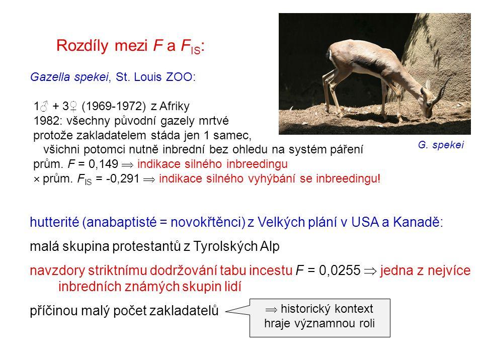 Rozdíly mezi F a F IS : Gazella spekei, St. Louis ZOO: 1♂ + 3♀ (1969-1972) z Afriky 1982: všechny původní gazely mrtvé protože zakladatelem stáda jen