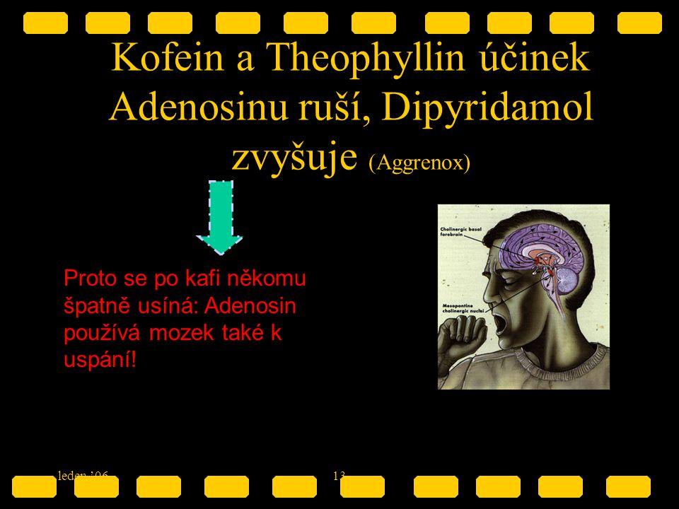 leden '0613 Kofein a Theophyllin účinek Adenosinu ruší, Dipyridamol zvyšuje (Aggrenox) Proto se po kafi někomu špatně usíná: Adenosin používá mozek ta