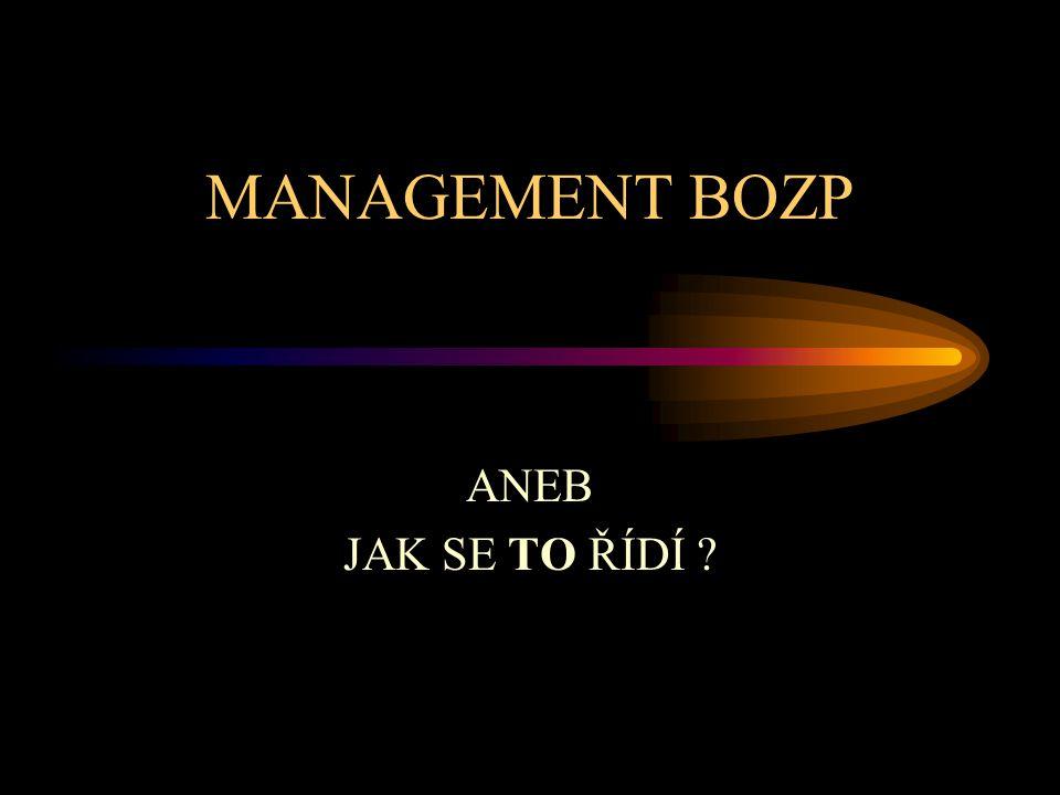Poslání norem a.vytvořit systém řízení BOZP k vyloučení nebo minimalizaci rizik pro zaměstnance a další zainteresované strany, které mohou být vystaveny rizikům BOZP spojeným s činnostmi organizace; b.zavést, udržovat a trvale zlepšovat systém řízení BOZP; c.ujistit se o shodě s politikou BOZP, kterou samy vyhlásily; d.prokázat tuto shodu ostatním; e.požádat o certifikaci/registraci svého systému řízení BOZP externí organizací; nebo učinit vlastní rozhodnutí a vydat vlastní prohlášení o shodě s tímto standardem