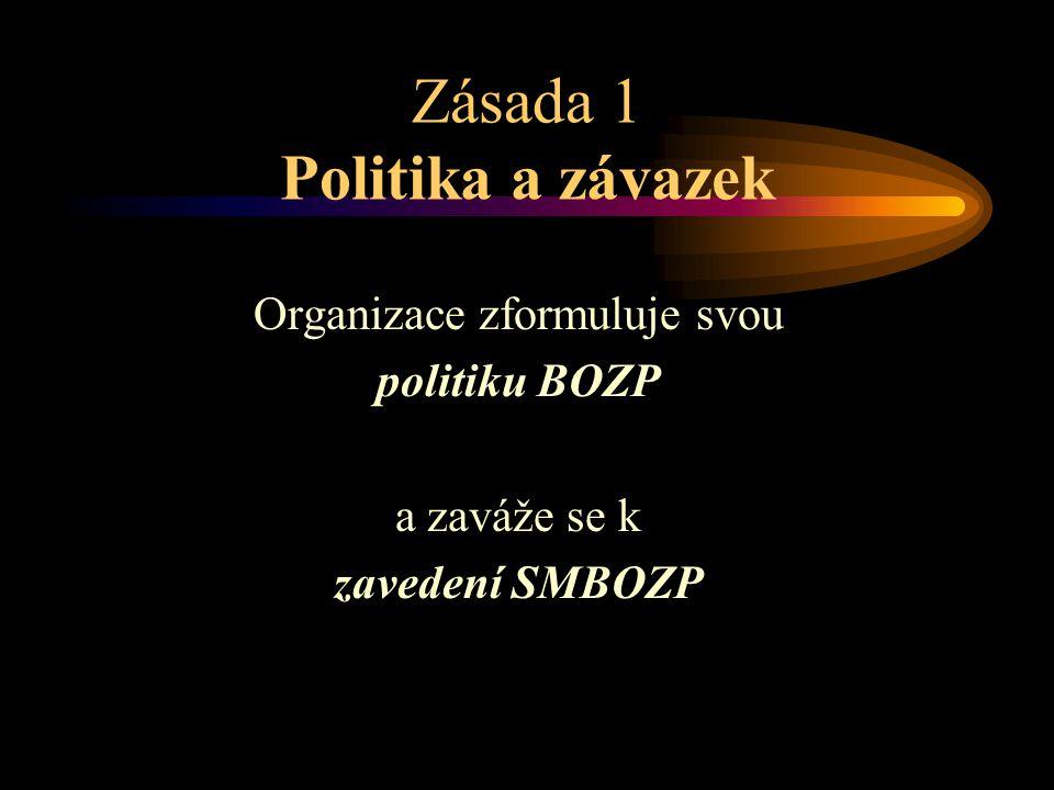 Zásada 1 Politika a závazek Organizace zformuluje svou politiku BOZP a zaváže se k zavedení SMBOZP