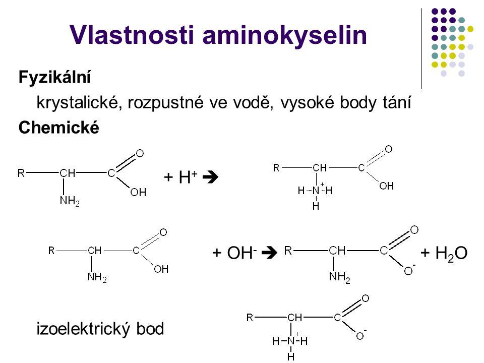 Vlastnosti aminokyselin Fyzikální krystalické, rozpustné ve vodě, vysoké body tání Chemické + H +  + OH -  + H 2 O izoelektrický bod