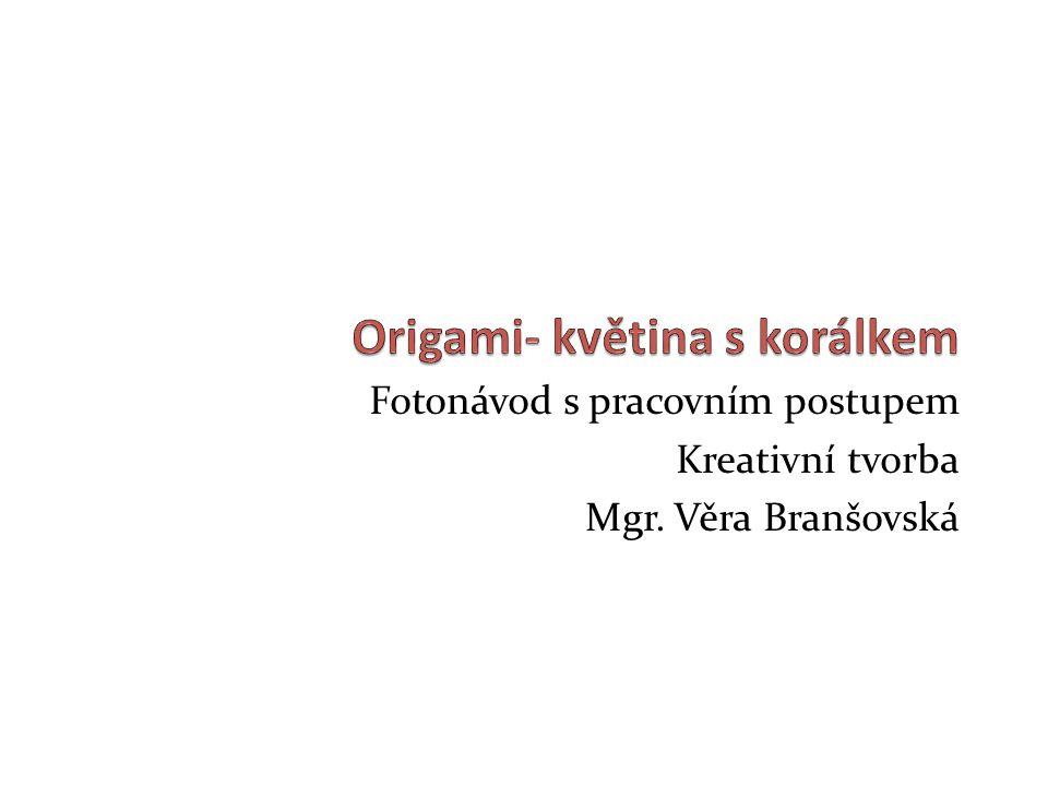 Fotonávod s pracovním postupem Kreativní tvorba Mgr. Věra Branšovská