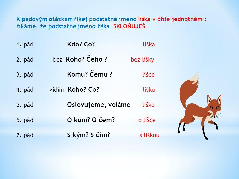 K pádovým otázkám říkej podstatné jméno liška v čísle množném : říkáme, že podstatné jméno liška SKLOŇUJEŠ 1.pád Kdo .