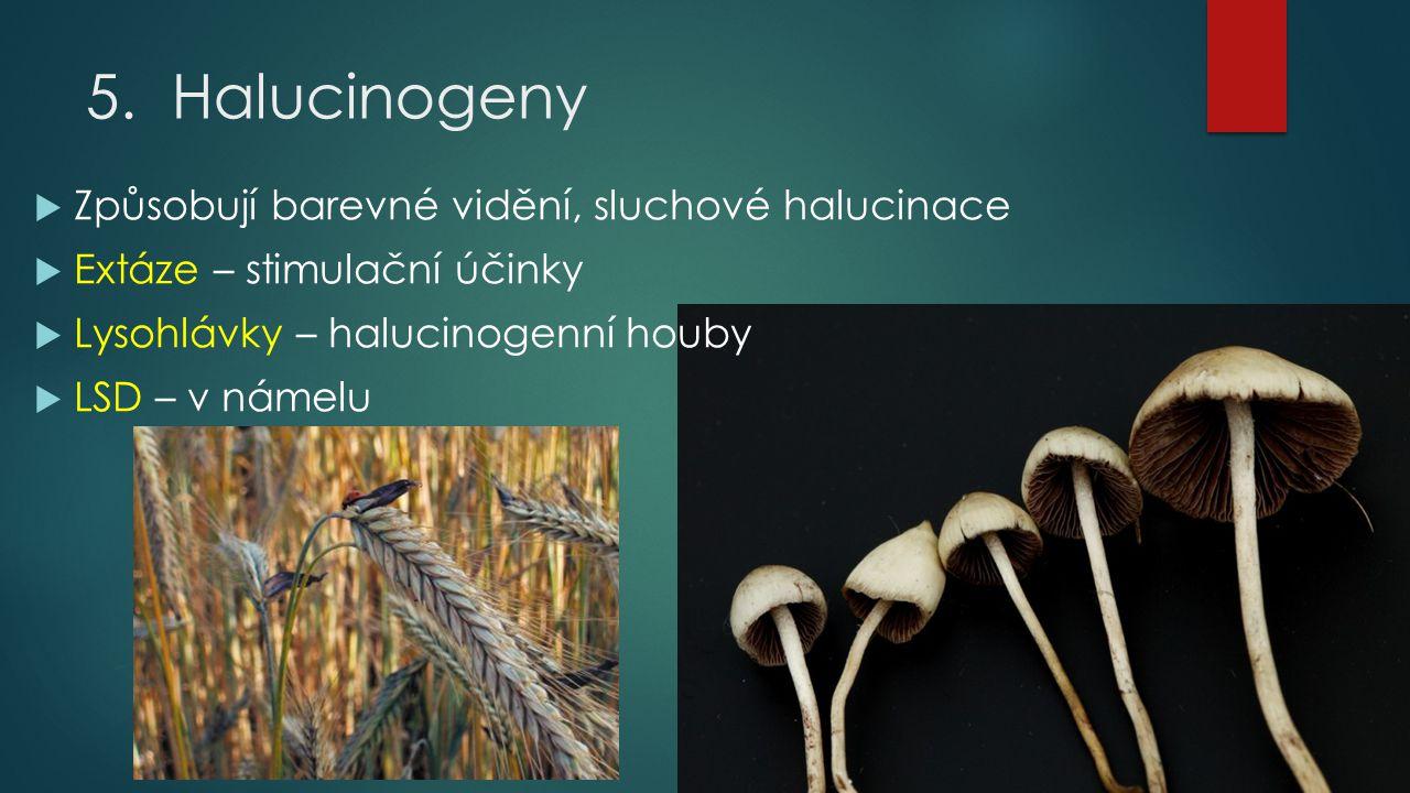 5.Halucinogeny  Způsobují barevné vidění, sluchové halucinace  Extáze – stimulační účinky  Lysohlávky – halucinogenní houby  LSD – v námelu