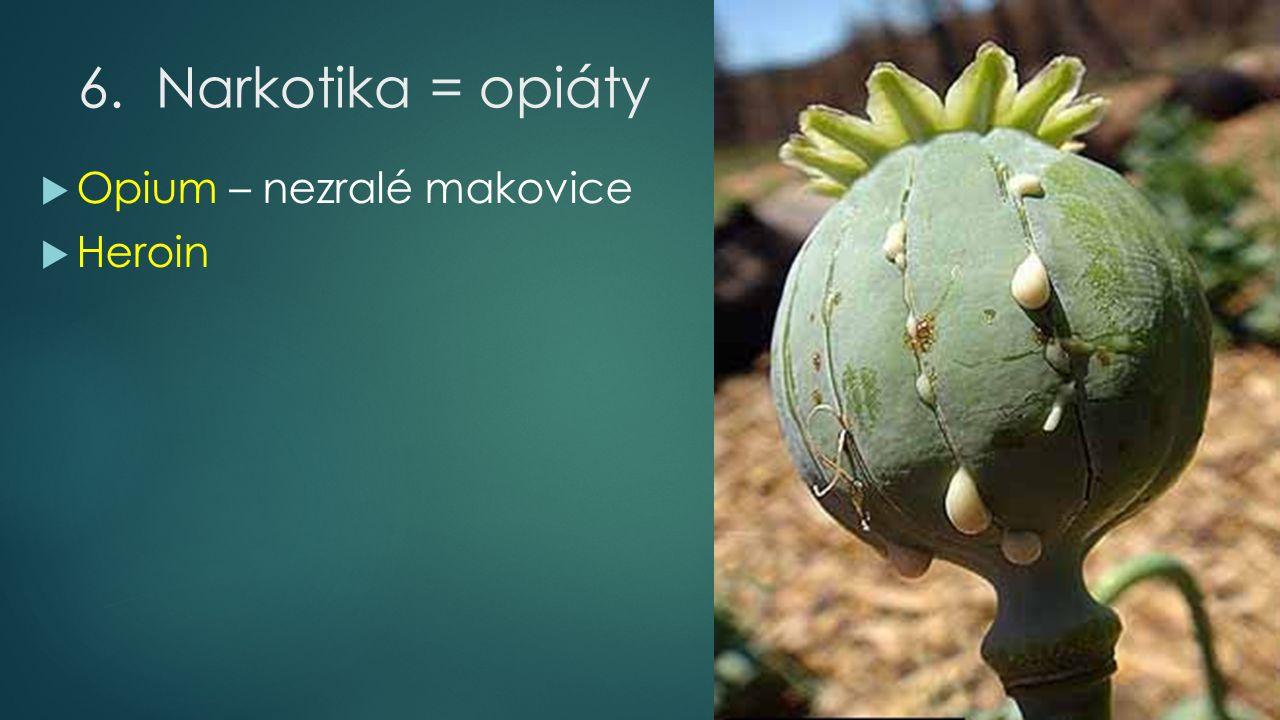 6.Narkotika = opiáty  Opium – nezralé makovice  Heroin