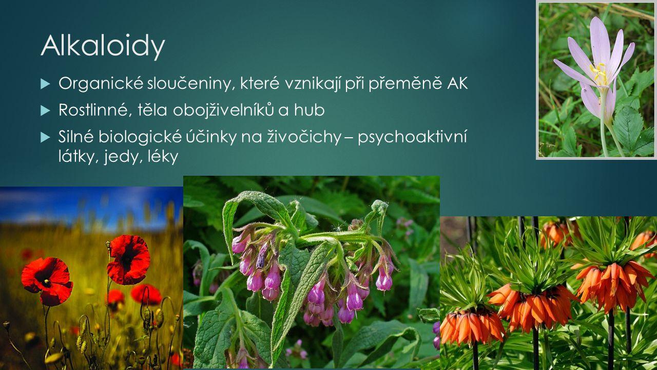 Alkaloidy  Organické sloučeniny, které vznikají při přeměně AK  Rostlinné, těla obojživelníků a hub  Silné biologické účinky na živočichy – psychoa