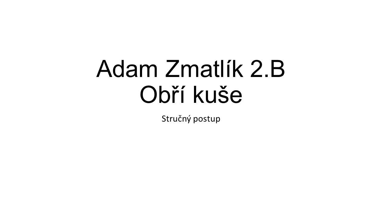 Adam Zmatlík 2.B Obří kuše Stručný postup