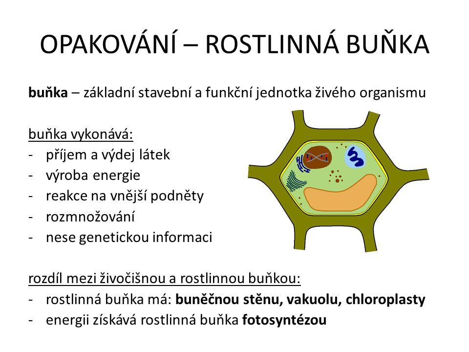 OPAKOVÁNÍ – ROSTLINNÁ BUŇKA buňka – základní stavební a funkční jednotka živého organismu buňka vykonává: -příjem a výdej látek -výroba energie -reakce na vnější podněty -rozmnožování -nese genetickou informaci rozdíl mezi živočišnou a rostlinnou buňkou: -rostlinná buňka má: buněčnou stěnu, vakuolu, chloroplasty -energii získává rostlinná buňka fotosyntézou