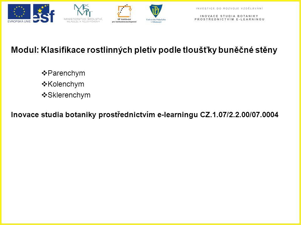 Modul: Klasifikace rostlinných pletiv podle tloušťky buněčné stěny  Parenchym  Kolenchym  Sklerenchym Inovace studia botaniky prostřednictvím e-lea