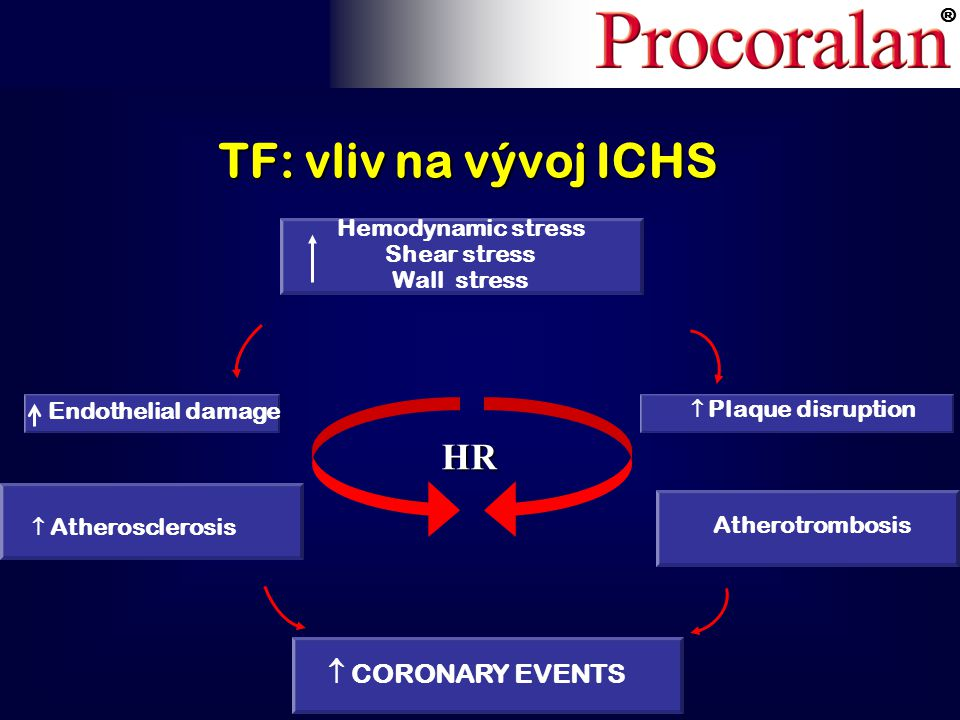 ® TF: vliv na vývoj ICHS  CORONARY EVENTS Endothelial damage  Plaque disruption  Atherosclerosis Hemodynamic stress Shear stress Wall stress Atherotrombosis HR