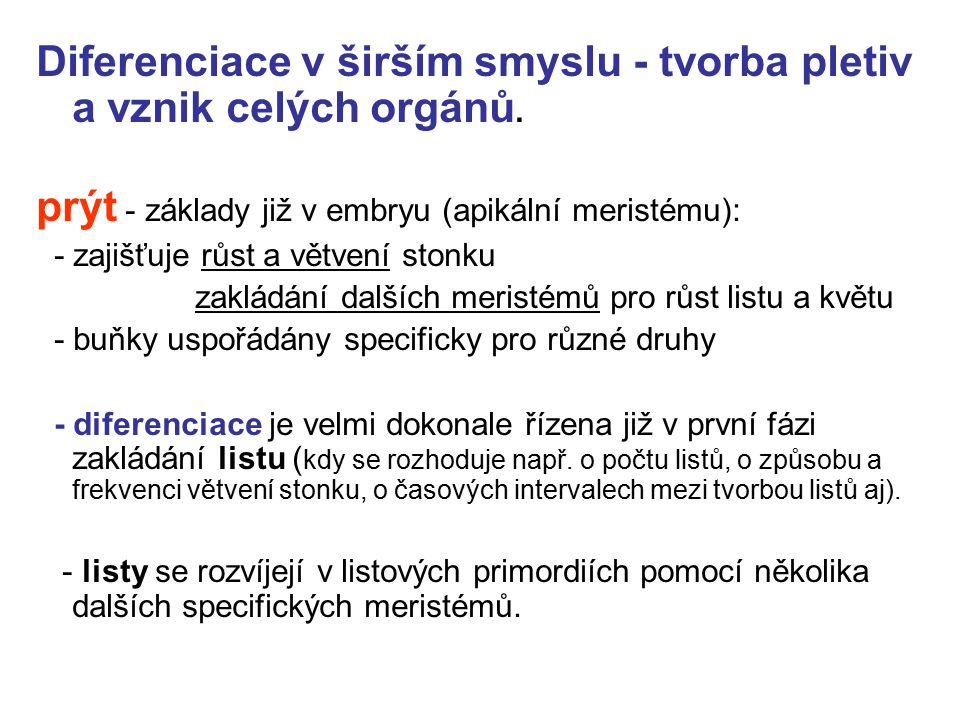 Diferenciace v širším smyslu - tvorba pletiv a vznik celých orgánů. prýt - základy již v embryu (apikální meristému): - zajišťuje růst a větvení stonk