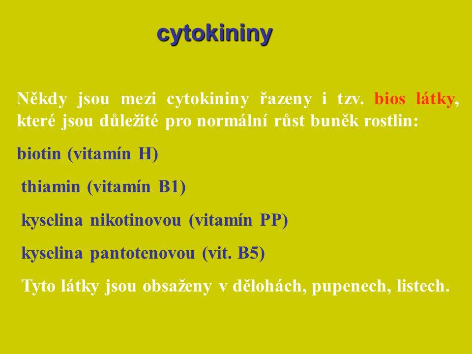 Někdy jsou mezi cytokininy řazeny i tzv. bios látky, které jsou důležité pro normální růst buněk rostlin: biotin (vitamín H) thiamin (vitamín B1) kyse