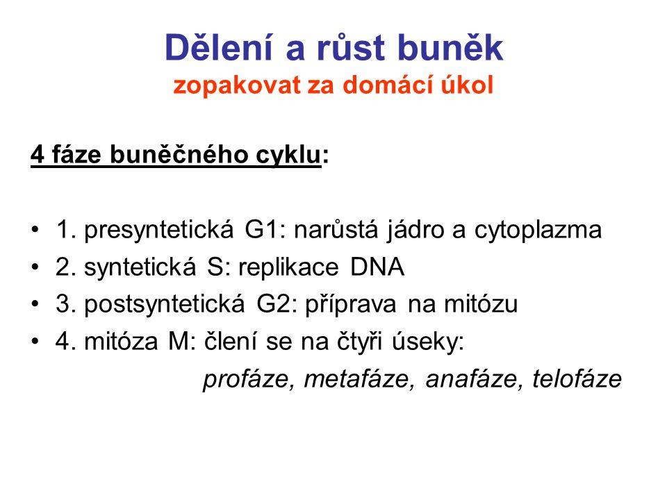 Cytokininy Cytokininy