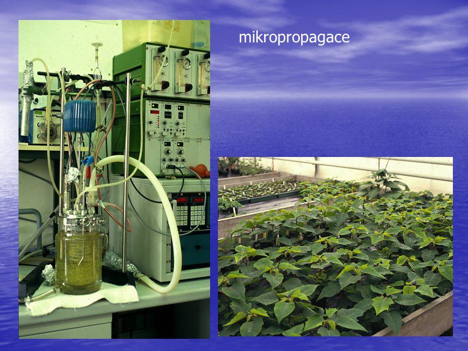 Zařízení pro speciální kultivační režimy (Inkubátory, třepačky, rolery, bioreaktory)