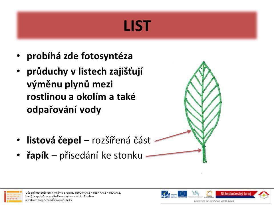 LIST probíhá zde fotosyntéza průduchy v listech zajišťují výměnu plynů mezi rostlinou a okolím a také odpařování vody listová čepel – rozšířená část ř