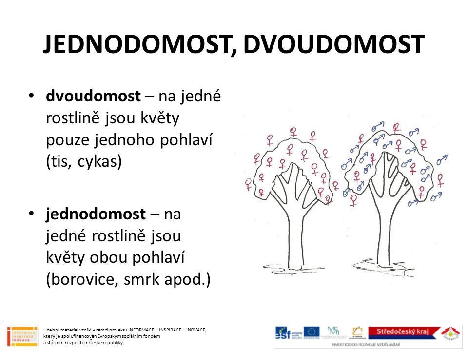 JEDNODOMOST, DVOUDOMOST dvoudomost – na jedné rostlině jsou květy pouze jednoho pohlaví (tis, cykas) jednodomost – na jedné rostlině jsou květy obou p