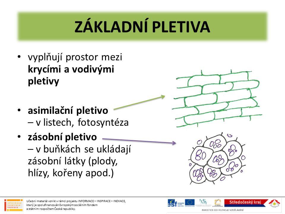 KVĚTENSTVÍ 1) HROZEN (rybíz, réva) 2) KLAS (pšenice) 3) LATA (šeřík) 4) ÚBOR (pampeliška) 5) OKOLÍK (mrkev) 6) VRCHOLÍK (bez) 7) SRPEK (mečík) Učební materiál vznikl v rámci projektu INFORMACE – INSPIRACE – INOVACE, který je spolufinancován Evropským sociálním fondem a státním rozpočtem České republiky.