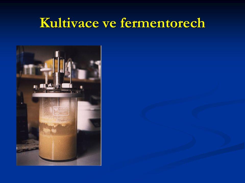 Kultivace ve fermentorech