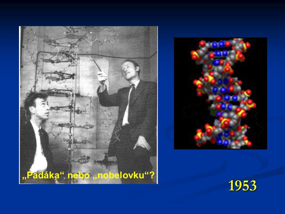 """""""Padáka"""" nebo """"nobelovku""""? 1953"""