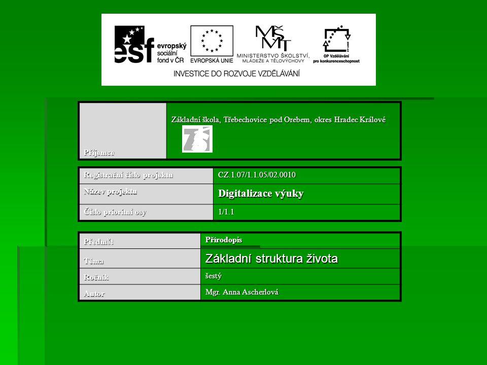 Příjemce Základní škola, Třebechovice pod Orebem, okres Hradec Králové Registrační číslo projektu CZ.1.07/1.1.05/02.0010 Název projektu Digitalizace v