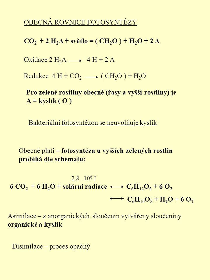 Obecně platí – fotosyntéza u vyšších zelených rostlin probíhá dle schématu: OBECNÁ ROVNICE FOTOSYNTÉZY CO 2 + 2 H 2 A + světlo = ( CH 2 O ) + H 2 O + 2 A Oxidace 2 H2AH2A Redukce 4 H + CO 2 Pro zelené rostliny obecně (řasy a vyšší rostliny) je A = kyslík ( O ) 4 H + 2 A ( CH 2 O ) + H2OH2O Bakteriální fotosyntézou se neuvolňuje kyslík 6 CO 2 + 6 H 2 O + solární radiace C 6 H 12 O 6 + 6 O2O2 C 6 H 10 O 5 + H 2 O + 6 O2O2 2,8.