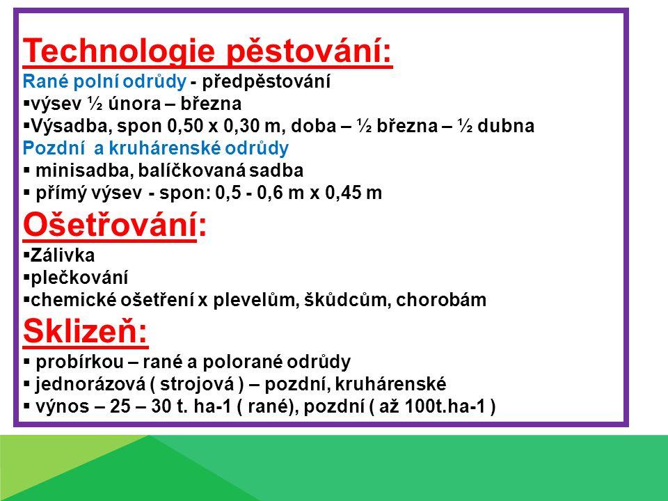 Choroby brukvovitých : Nádorovitost košťálovin (Plasmodiphora brassiceae ) – hypertrofie pletiv, nádory na kořenech, původce houba, spóry v půdě - 4 – 7 let Plíseň zelná ( Peronospora brassicae ) – škody na sadbě, skládkách, výskyt nekrotických skvrn Altenariová skvrnitost listů brukvovitých ( Altenaris brassicicola ) - houba - škody na sadbě, nadzemních částech, šedé až černé skvrny Fomová hniloba ( Leptosphaeria maculans ) – houba - napadající brukvovité celá doba vegetace, na všech částech rostlin černé skvrny -krnění rostlin – podřadná jakost Plíseň šedá ( Botrytis cinerea ) – houba napadající sadbu,až skladované rostliny, povrchové listy měknou a hnijí, rychlý průnik do hlávky Padání klíčících rostlin – onemocnění hypokotylu klíčících a vzcházejích rostlin, způsobují houby rodu Pythium, Olpidium