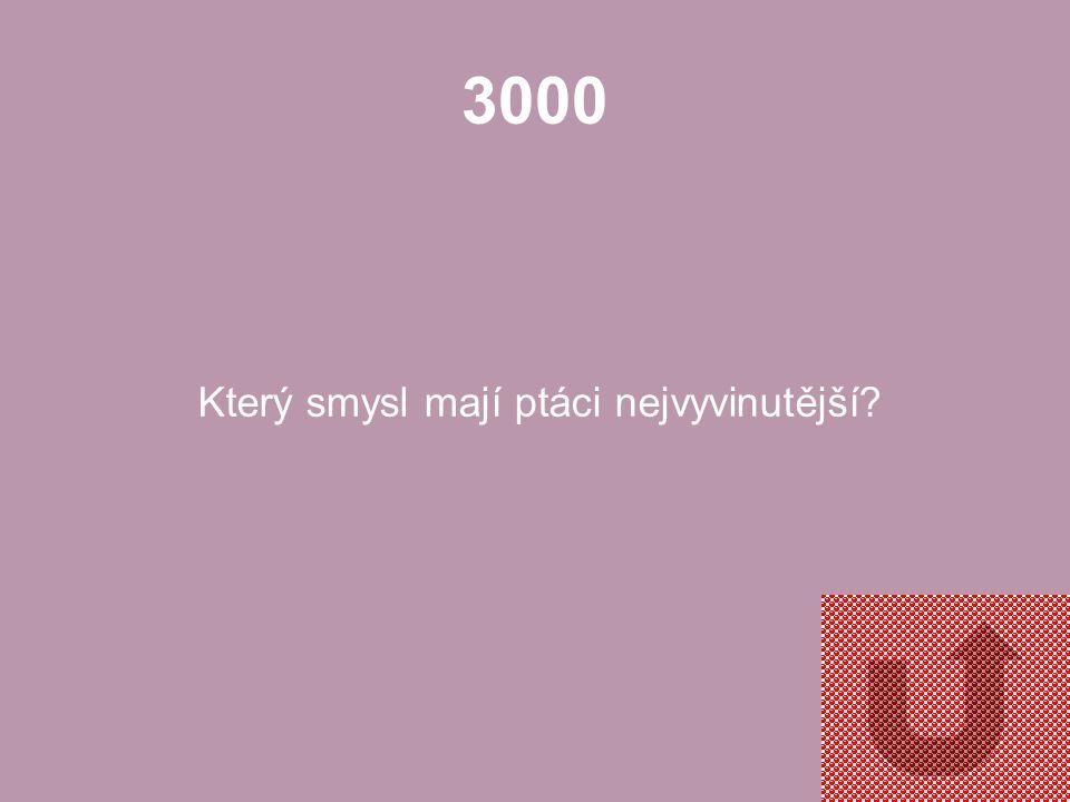 2000 Jak se nazývá larva obojživelníků?
