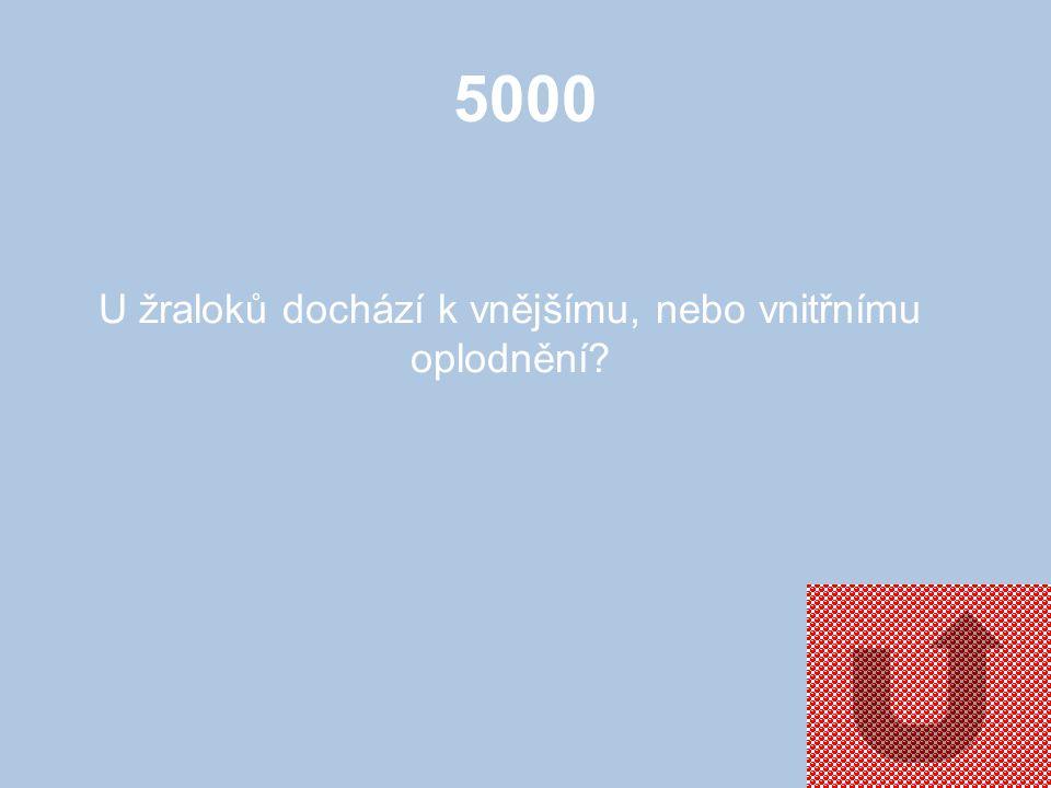 5000 K čemu slouží ostěra?
