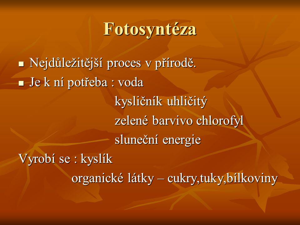 Fotosyntéza Nejdůležitější proces v přírodě. Nejdůležitější proces v přírodě. Je k ní potřeba : voda Je k ní potřeba : voda kysličník uhličitý kysličn