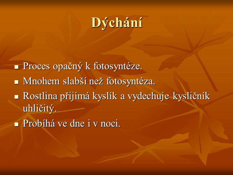 Dýchání Proces opačný k fotosyntéze. Proces opačný k fotosyntéze. Mnohem slabší než fotosyntéza. Mnohem slabší než fotosyntéza. Rostlina přijímá kyslí