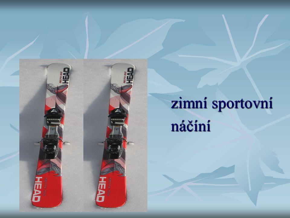 lyže zimní sportovní náčíní