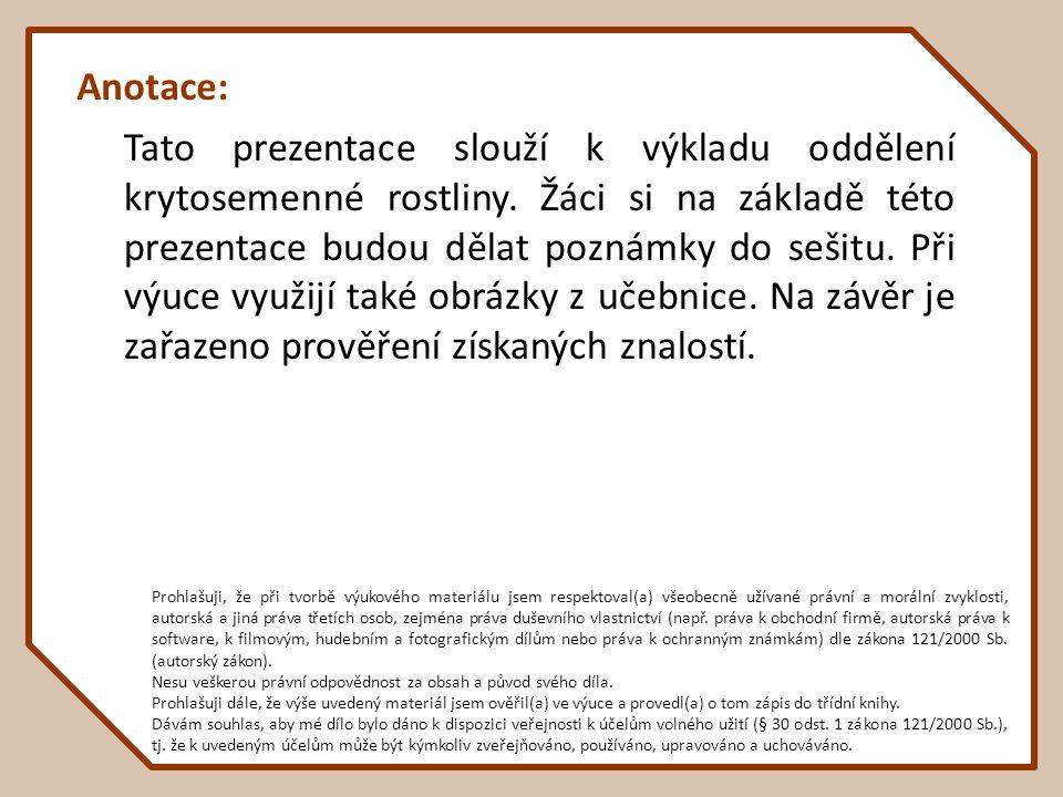 Anotace: Tato prezentace slouží k výkladu oddělení krytosemenné rostliny.