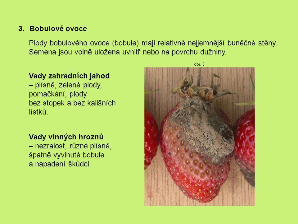3.Bobulové ovoce Plody bobulového ovoce (bobule) mají relativně nejjemnější buněčné stěny.