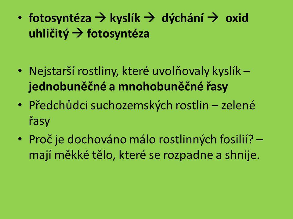 fotosyntéza  kyslík  dýchání  oxid uhličitý  fotosyntéza Nejstarší rostliny, které uvolňovaly kyslík – jednobuněčné a mnohobuněčné řasy Předchůdci