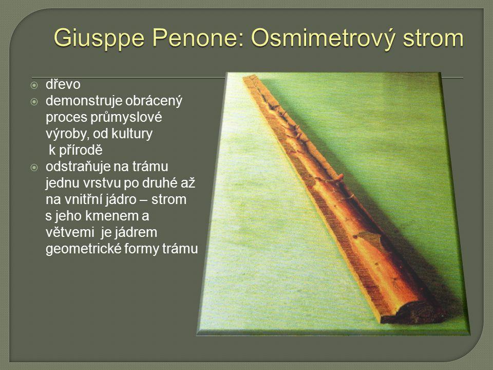  dřevo  demonstruje obrácený proces průmyslové výroby, od kultury k přírodě  odstraňuje na trámu jednu vrstvu po druhé až na vnitřní jádro – strom
