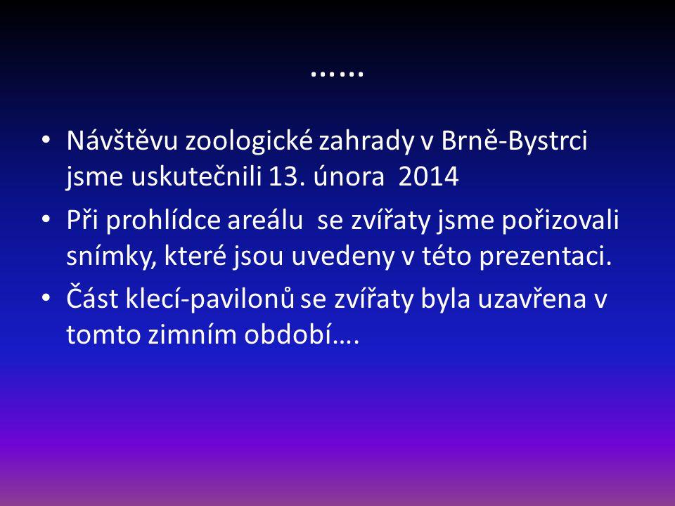 Návštěva ZOO Brno Únor 2014 První část