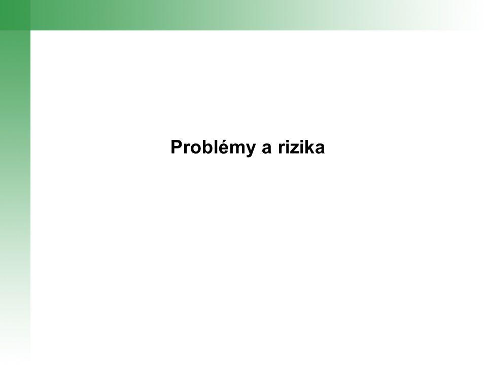 Problémy a rizika