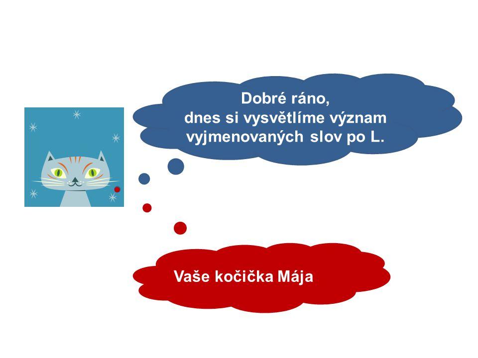 Mgr. Kateřina Fiedlerová Vyjmenovaná slova po L - význam vyjmenovaných slov. 6. ročník