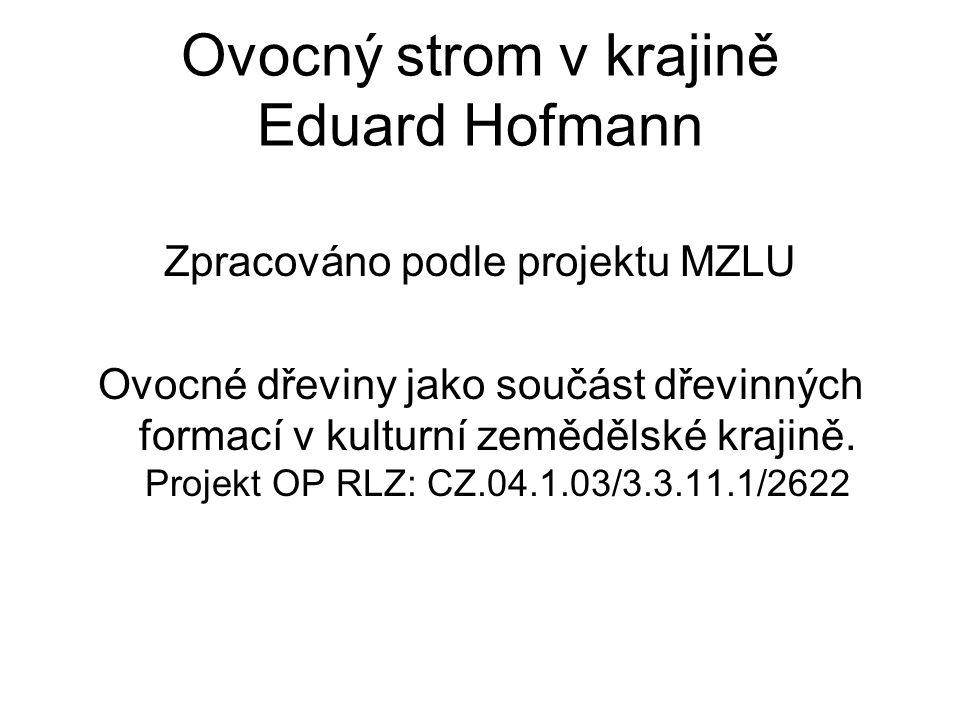 Ovocný strom v krajině Eduard Hofmann Zpracováno podle projektu MZLU Ovocné dřeviny jako součást dřevinných formací v kulturní zemědělské krajině.