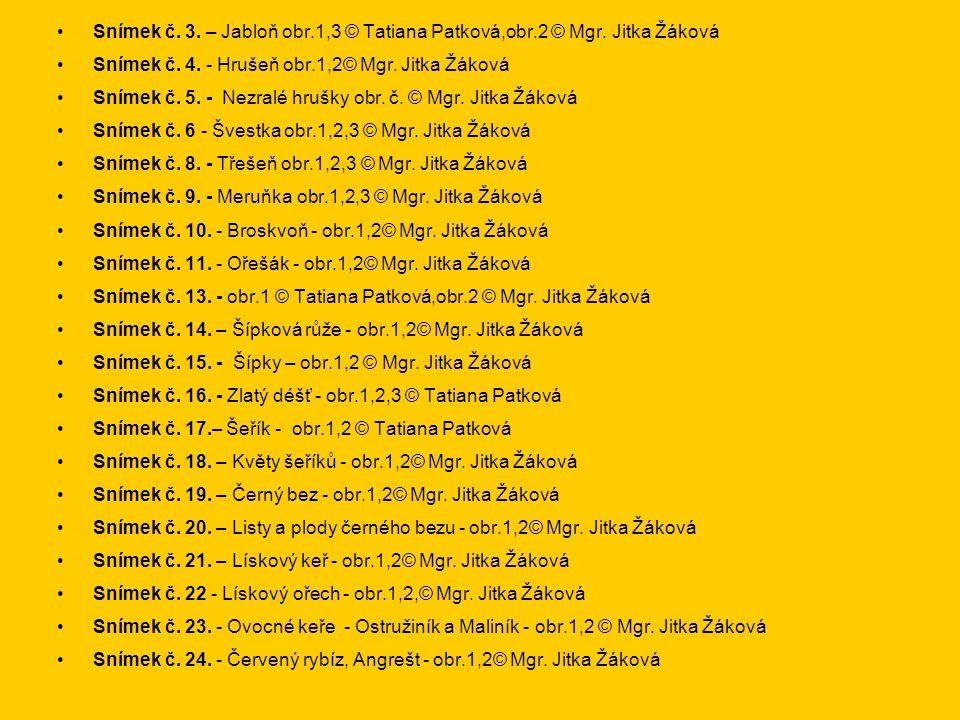 Snímek č. 3. – Jabloň obr.1,3 © Tatiana Patková,obr.2 © Mgr. Jitka Žáková Snímek č. 4. - Hrušeň obr.1,2© Mgr. Jitka Žáková Snímek č. 5. - Nezralé hruš