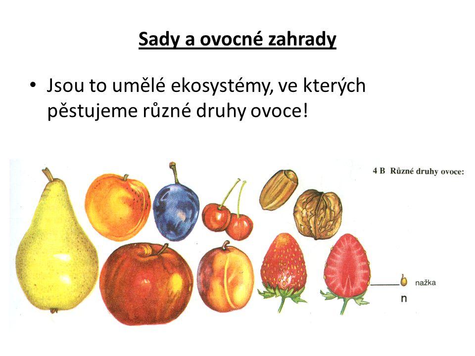 Sady a ovocné zahrady Jsou to umělé ekosystémy, ve kterých pěstujeme různé druhy ovoce!