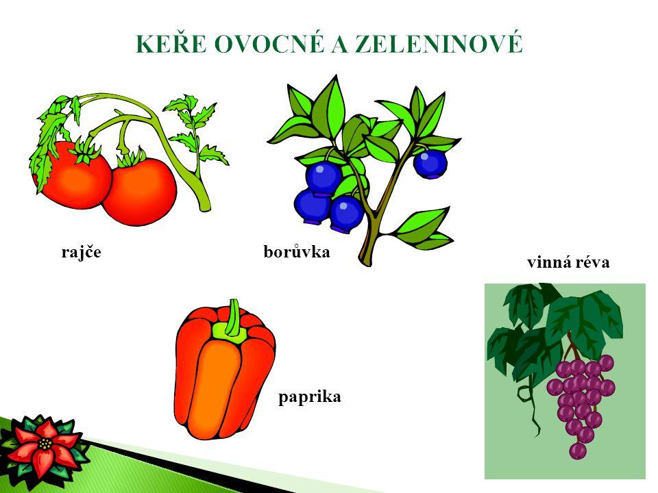 rajče paprika borůvka vinná réva