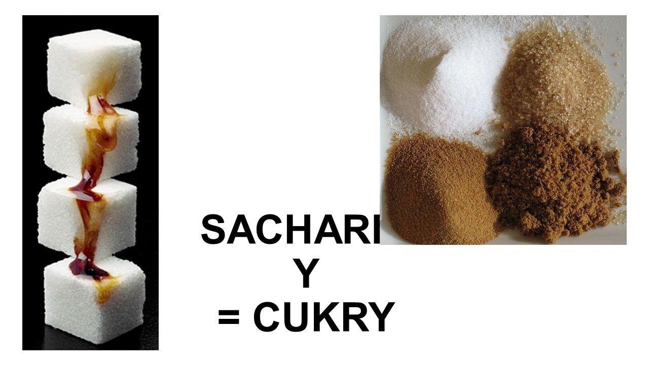 SACHARID Y = CUKRY