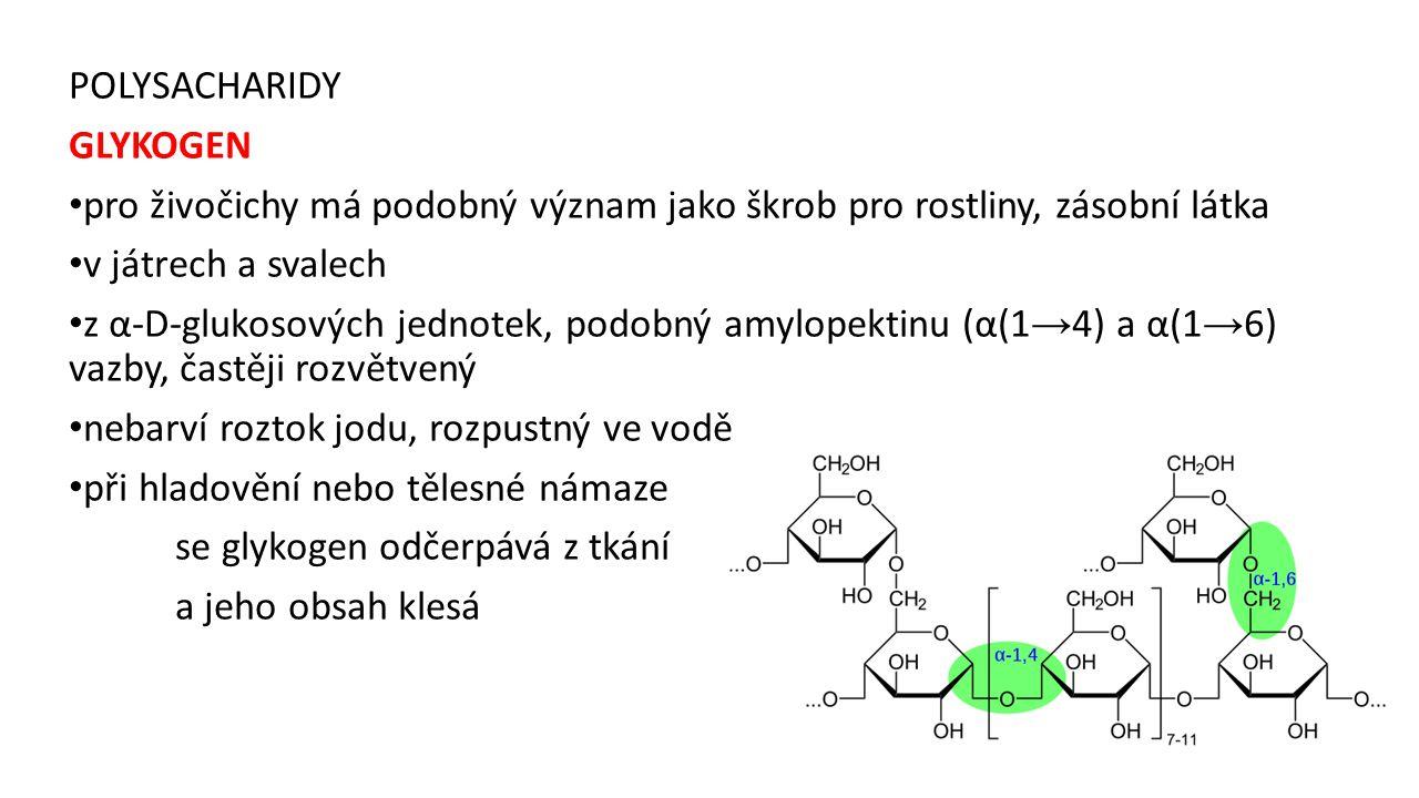 POLYSACHARIDY GLYKOGEN pro živočichy má podobný význam jako škrob pro rostliny, zásobní látka v játrech a svalech z α-D-glukosových jednotek, podobný