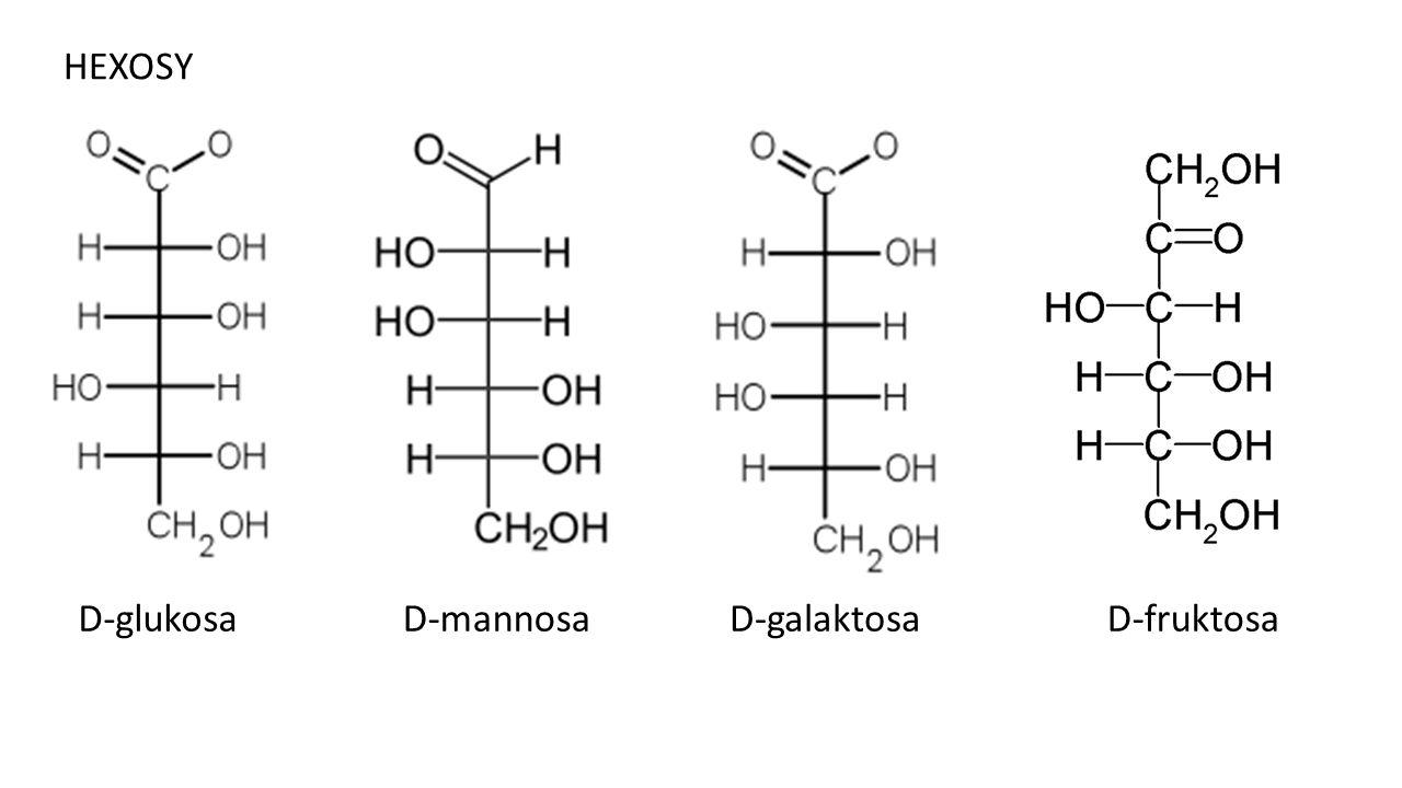 HEXOSY D-glukosaD-mannosaD-galaktosaD-fruktosa